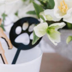 Puppy Party on Kara's Party Ideas | KarasPartyIdeas.com (4)