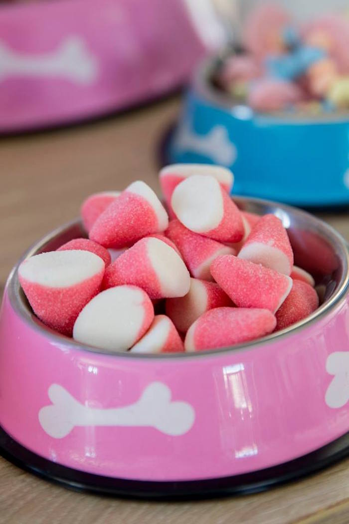 Gummy Candy in a Dog Bowl from a Secret Life of Pets Birthday Party on Kara's Party Ideas | KarasPartyIdeas.com (32)