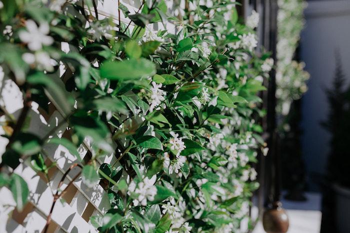 Lattice + Greenery Bloom Backdrop from a Stylish & Elegant Wedding on Kara's Party Ideas | KarasPartyIdeas.com (9)