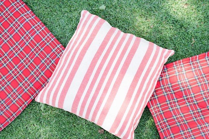 Red Picnic Pillows and Blankets from a Teddy Bear Picnic Birthday Party on Kara's Party Ideas | KarasPartyIdeas.com (23)