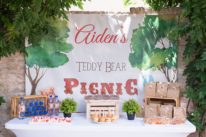 Picnic Party Table from a Teddy Bear Picnic Birthday Party on Kara's Party Ideas | KarasPartyIdeas.com (34)