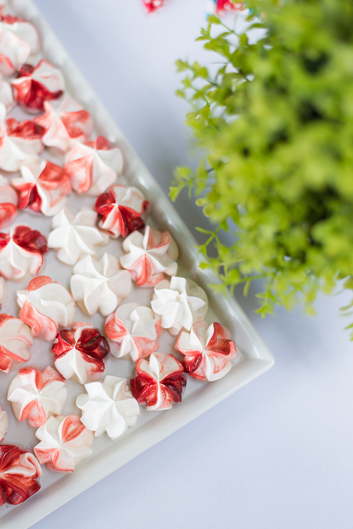 Red and White Meringues from a Teddy Bear Picnic Birthday Party on Kara's Party Ideas | KarasPartyIdeas.com (33)