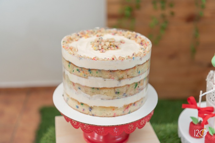 Layered Confetti Cake from a Hungry Caterpillar Inspired Birthday Party on Kara's Party Ideas | KarasPartyIdeas.com (21)