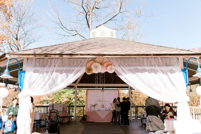 Gazebo Partyscape from a Whimsical Pastel Zoo Animal Birthday Party on Kara's Party Ideas | KarasPartyIdeas.com (6)