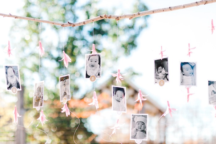First year Twig Photo Banner from a Whimsical Pastel Zoo Animal Birthday Party on Kara's Party Ideas | KarasPartyIdeas.com (14)