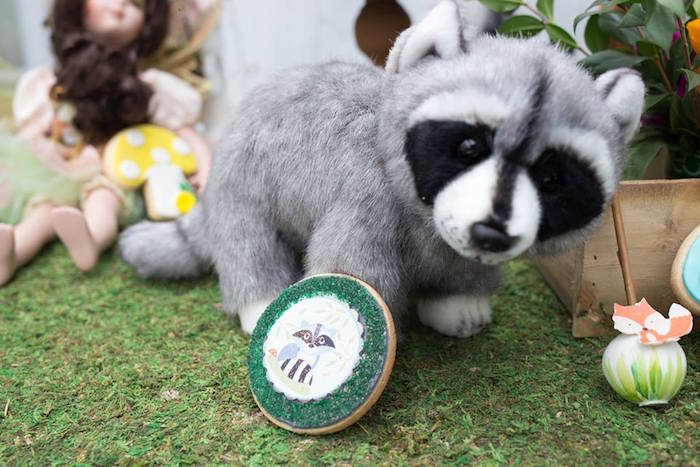 Raccoon Cookie + Plush from a Woodland Animals & Fairies Enchanted Forest Party for Twins on Kara's Party Ideas | KarasPartyIdeas.com (30)