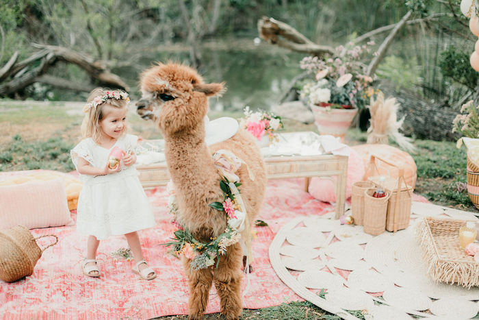 Alpaca Love Birthday Party on Kara's Party Ideas | KarasPartyIdeas.com (14)