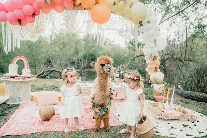 Alpaca Love Birthday Party on Kara's Party Ideas | KarasPartyIdeas.com (12)