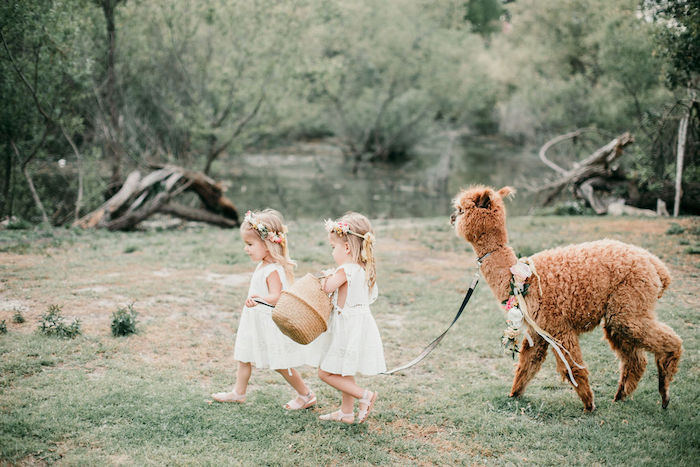 Alpaca Love Birthday Party on Kara's Party Ideas | KarasPartyIdeas.com (10)