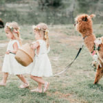 Alpaca Love Birthday Party on Kara's Party Ideas | KarasPartyIdeas.com (5)