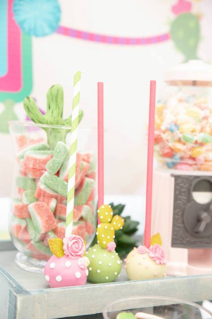 ADORABLE CACTUS CAKE POPS from a Colorful Llama and Cactus Birthday Party on Kara's Party Ideas | KarasPartyIdeas.com (24)