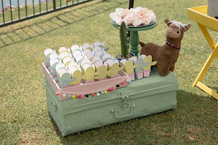 Vintage Suitcase Snack Table from a Colorful Llama and Cactus Birthday Party on Kara's Party Ideas | KarasPartyIdeas.com (18)