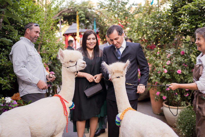 Peruvian Alpaca Inspired Wedding on Kara's Party Ideas | KarasPartyIdeas.com (20)