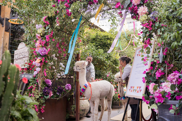 Peruvian Alpaca Inspired Wedding on Kara's Party Ideas | KarasPartyIdeas.com (18)