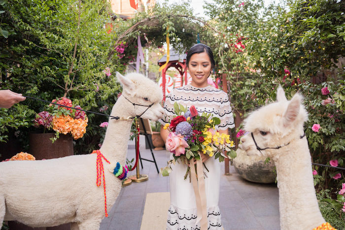 Peruvian Alpaca Inspired Wedding on Kara's Party Ideas | KarasPartyIdeas.com (12)