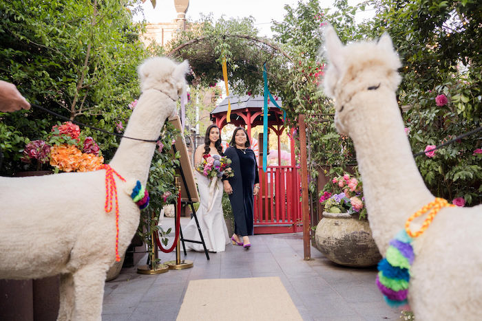 Peruvian Alpaca Inspired Wedding on Kara's Party Ideas | KarasPartyIdeas.com (11)