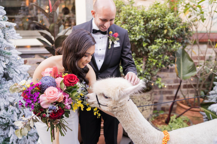 Peruvian Alpaca Inspired Wedding on Kara's Party Ideas | KarasPartyIdeas.com (7)