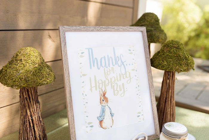 Peter Rabbit Favor Table + Signage from a Peter Rabbit Baby Shower on Kara's Party Ideas | KarasPartyIdeas.com (15)
