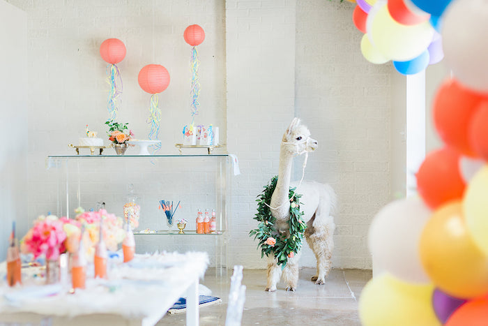 Pretty Alpaca Party on Kara's Party Ideas | KarasPartyIdeas.com (31)