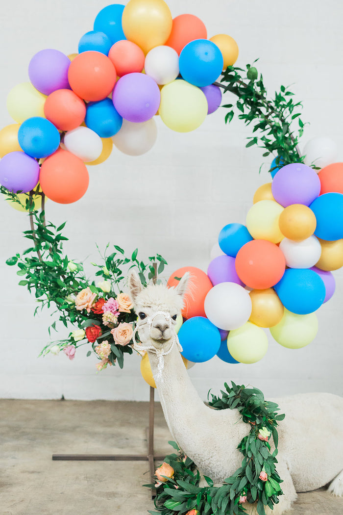 Giant Floral Balloon Wreath from a Pretty Alpaca Party on Kara's Party Ideas | KarasPartyIdeas.com (13)