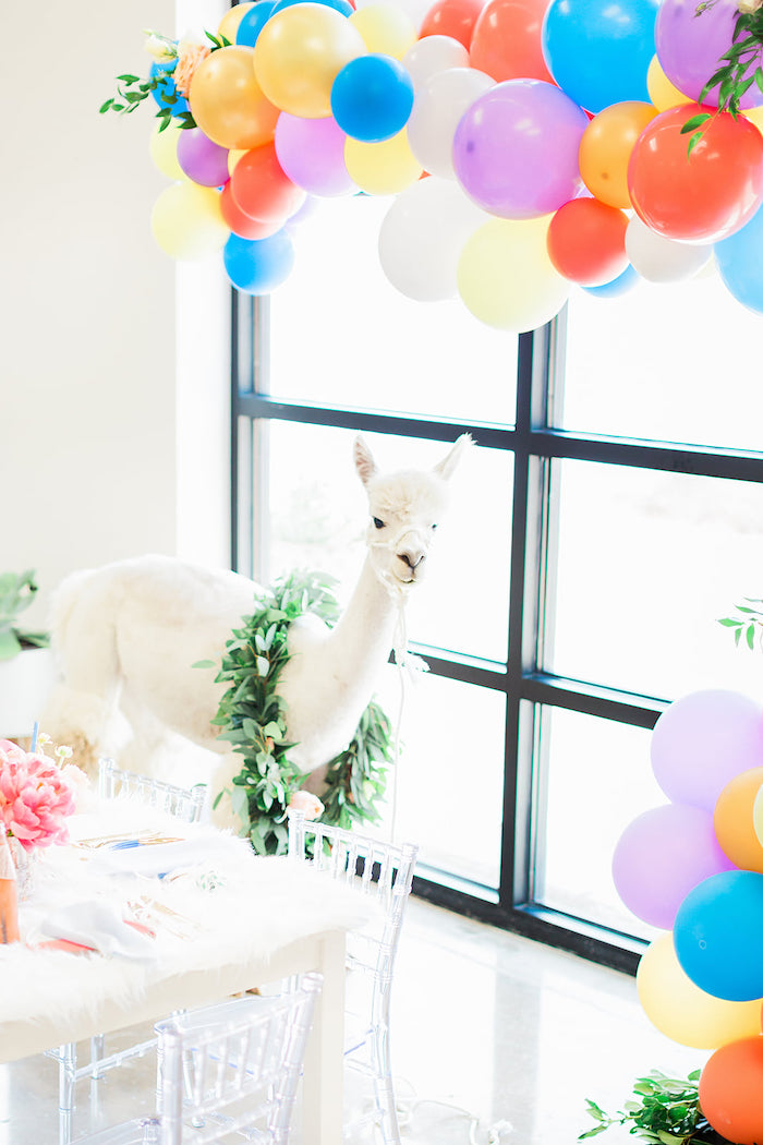 Balloon Garland from a Pretty Alpaca Party on Kara's Party Ideas | KarasPartyIdeas.com (35)