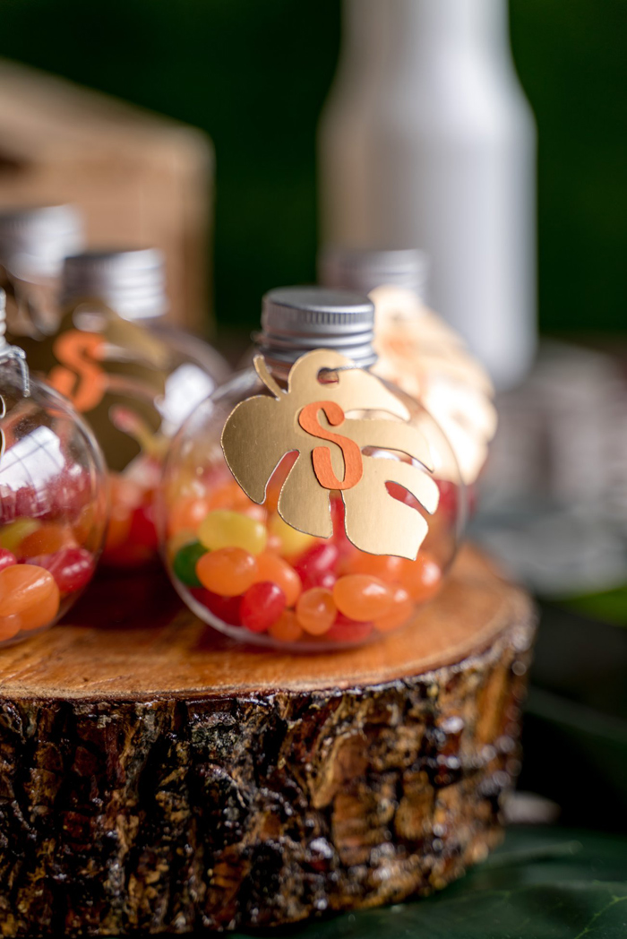 Jungle Jar Favors from a Simba & Friends Lion King Birthday Party on Kara's Party Ideas | KarasPartyIdeas.com (20)