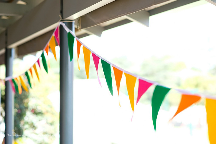 Colorful Pennant Banner from a Tutti Fruitti Birthday Party on Kara's Party Ideas | KarasPartyIdeas.com (10)
