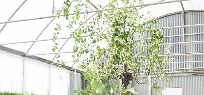Ethereal Greenhouse Baby Shower on Kara's Party Ideas | KarasPartyIdeas.com (4)