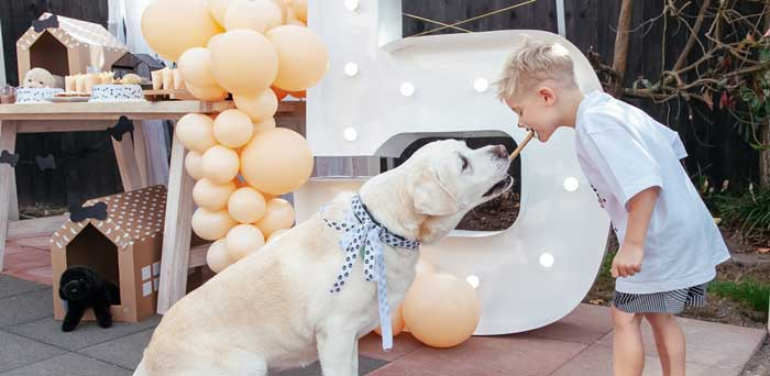Puppy Party on Kara's Party Ideas | KarasPartyIdeas.com (6)