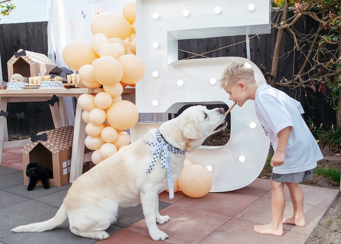 Puppy Treat from a Puppy Party on Kara's Party Ideas | KarasPartyIdeas.com (18)