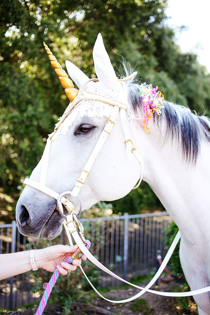 Unicorn from a 7th Heaven Birthday Party on Kara's Party Ideas | KarasPartyIdeas.com (14)