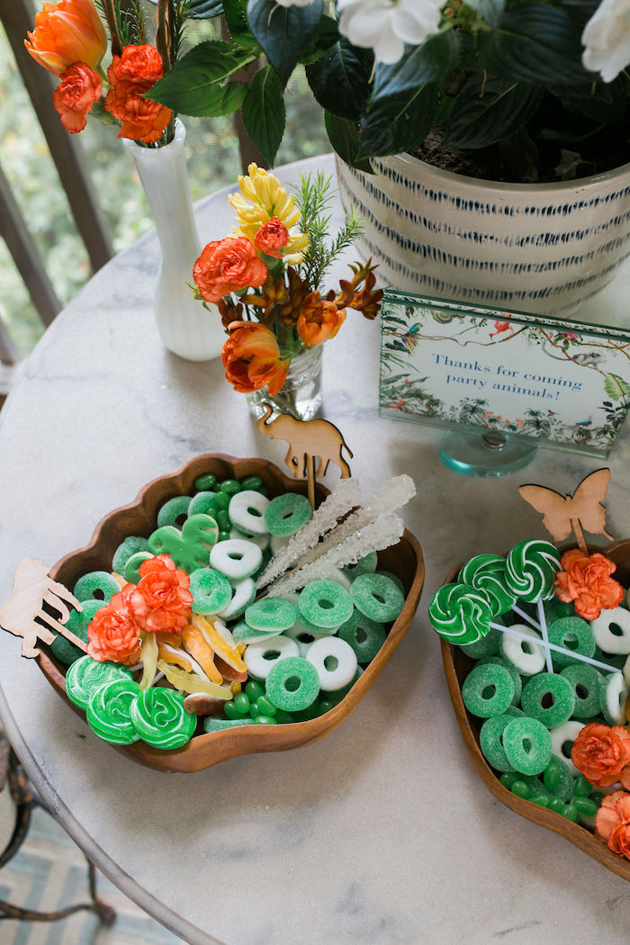 Jungle-inspired Candy Trays from a Jungle Birthday Party on Kara's Party Ideas | KarasPartyIdeas.com (25)