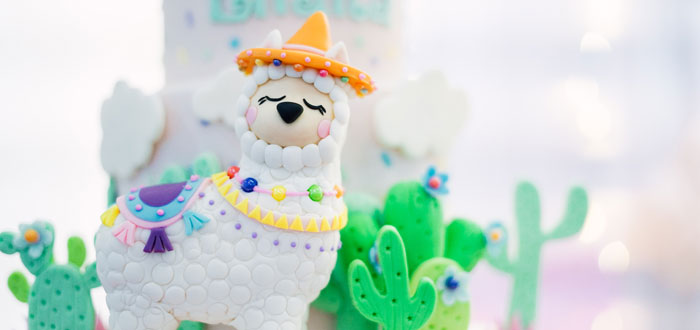 Pastel Llama Birthday Fiesta on Kara's Party Ideas | KarasPartyIdeas.com (4)