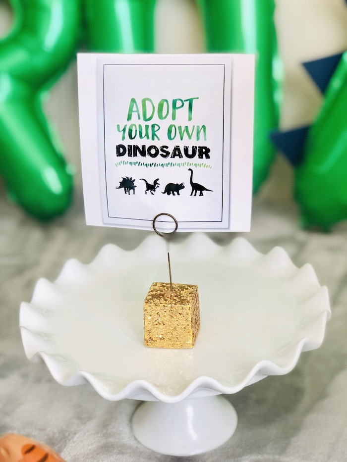Adopt a Dinosaur Party Signage from a Roaring Dinosaur Birthday Party on Kara's Party Ideas | KarasPartyIdeas.com (19)