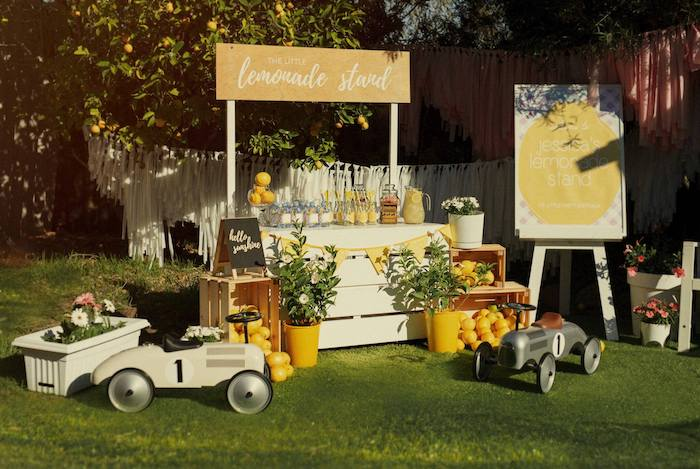 Lemonade Stand from a Vintage Chic Sunshine & Lemonade Party on Kara's Party Ideas | KarasPartyIdeas.com (23)