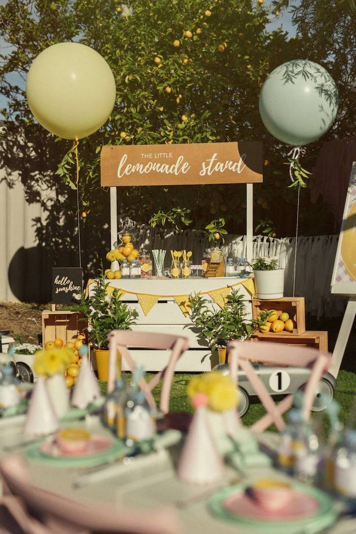 Lemonade Stand from a Vintage Chic Sunshine & Lemonade Party on Kara's Party Ideas | KarasPartyIdeas.com (36)