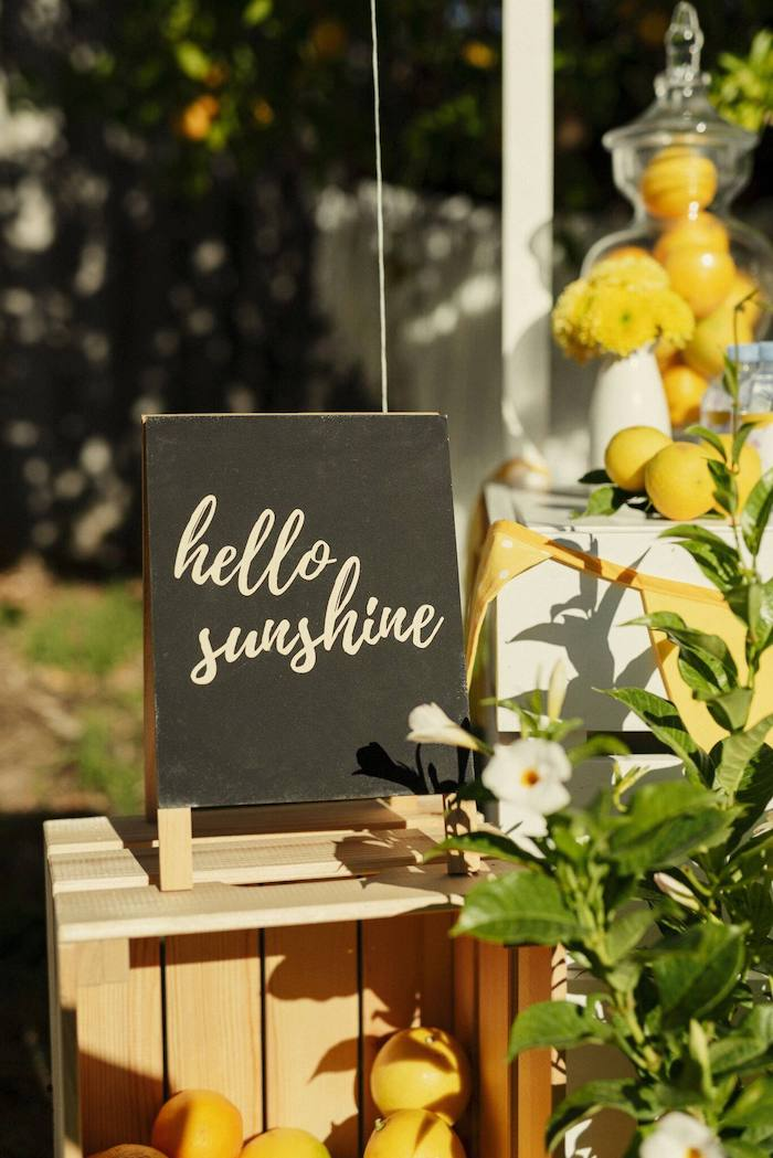Hello Sunshine Chalkboard Sign from a Vintage Chic Sunshine & Lemonade Party on Kara's Party Ideas | KarasPartyIdeas.com (33)