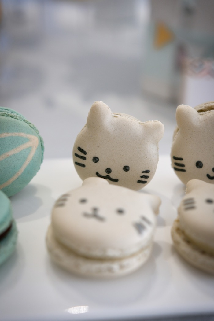 Cat Macarons from an Animals & Hot Air Balloons Birthday Party on Kara's Party Ideas | KarasPartyIdeas.com (14)