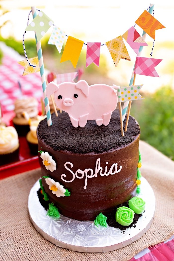 County Fair Themed Pig Cake from a County Fair Inspired Farm Birthday Party on Kara's Party Ideas | KarasPartyIdeas.com (24)