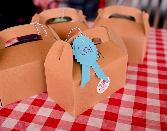 Pet Adoption Boxes from a County Fair Inspired Farm Birthday Party on Kara's Party Ideas | KarasPartyIdeas.com (20)