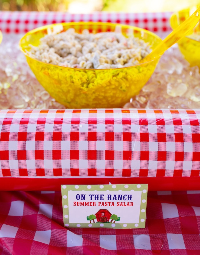 Potato Salad on Ice from a County Fair Inspired Farm Birthday Party on Kara's Party Ideas | KarasPartyIdeas.com (9)