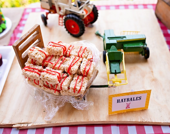 Hay Bale Rice Krispie Treats from a County Fair Inspired Farm Birthday Party on Kara's Party Ideas | KarasPartyIdeas.com (7)