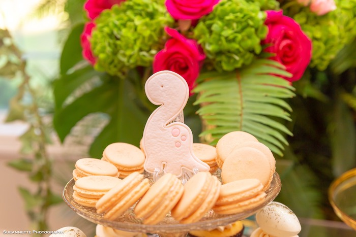 Macarons from a Girly Dino Soiree on Kara's Party Ideas | KarasPartyIdeas.com (30)