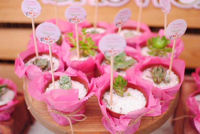 Succulent Favors from a Pastel Woodland Baby Shower on Kara's Party Ideas | KarasPartyIdeas.com (27)