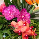 Tropical Garden High Tea on Kara's Party Ideas | KarasPartyIdeas.com (1)