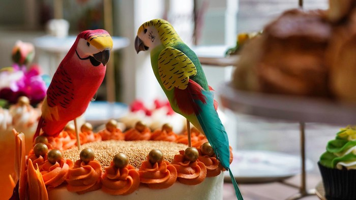 Tropical Bird Cake Toppers from a Tropical Garden High Tea on Kara's Party Ideas | KarasPartyIdeas.com (19)