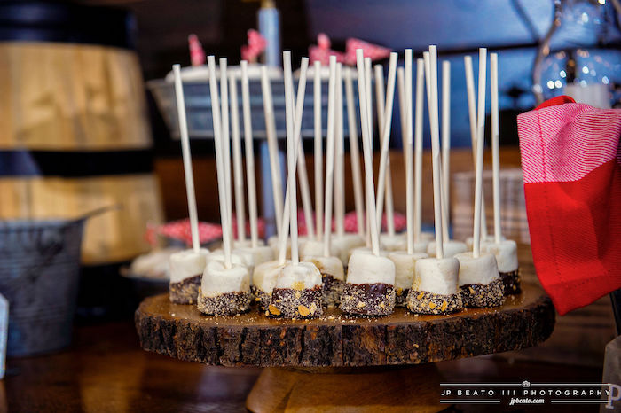 S'more Marshmallow Pops from a Camping Birthday Party on Kara's Party Ideas | KarasPartyIdeas.com (14)
