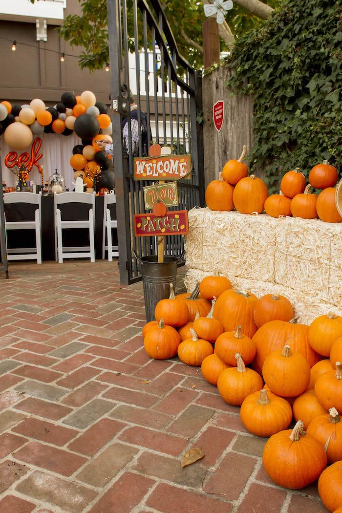 Pumpkin Patch Party Entrance from an Enchanting Backyard Halloween Party on Kara's Party Ideas | KarasPartyIdeas.com (3)