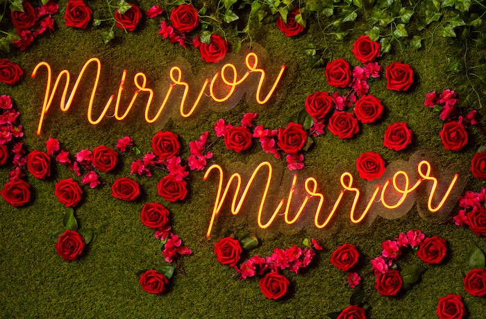 Red Rose Mirror Mirror Backdrop from a Snow White Birthday Party on Kara's Party Ideas | KarasPartyIdeas.com (12)