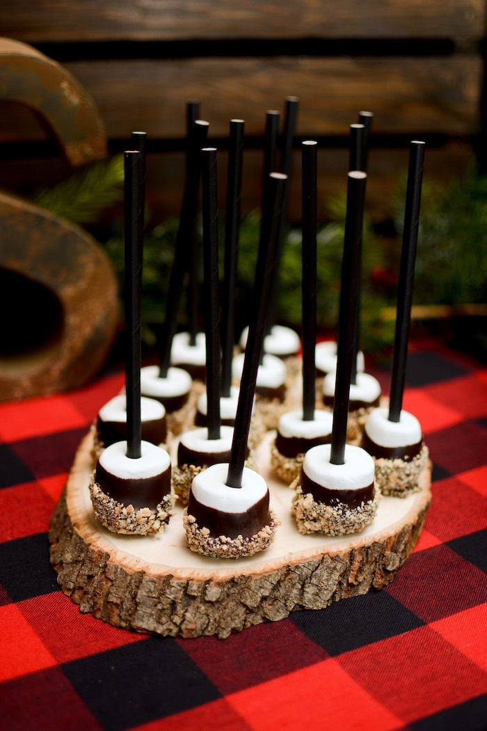 "Chocolate Marshmallow Pops from a ""Happy Camper"" Rustic Camping Birthday Party on Kara's Party Ideas 